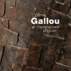 couv_expostion-gallou